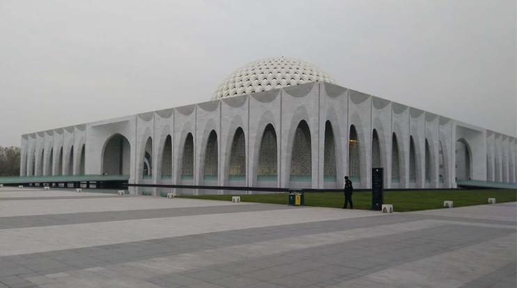 河北大厂县博物馆LED城市景观工程